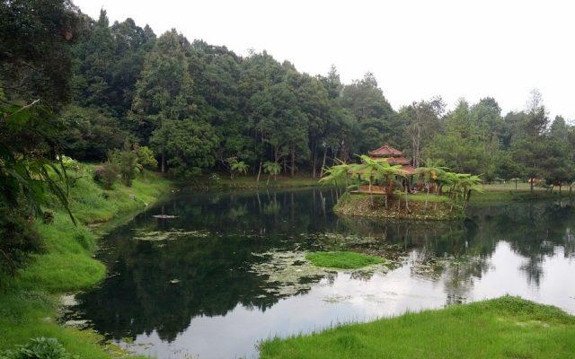 Camping Keluarga Bumi Perkemahan Mandalawangi
