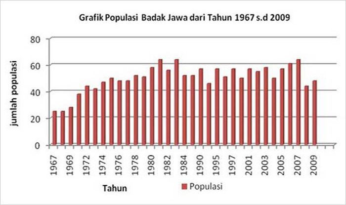 Populasi badak jawa