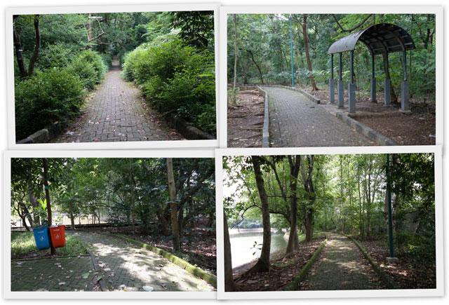 Hutan Kota Srengseng