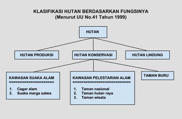 Klasifikasi hutan konservasi