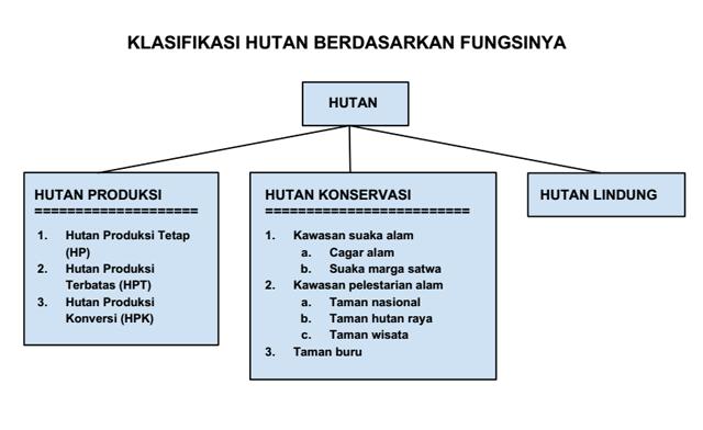 Klasifikasi hutan lindung
