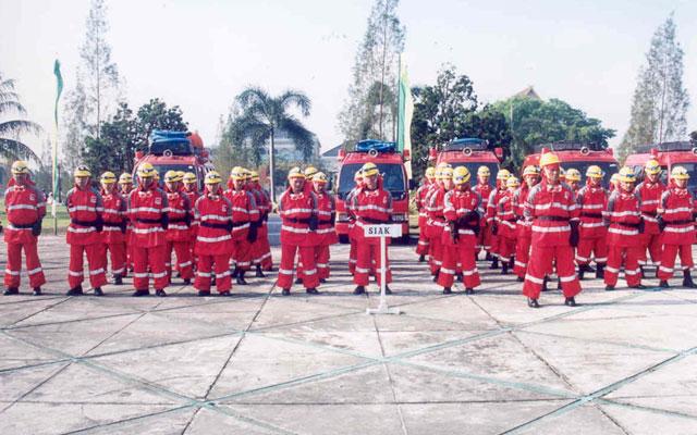 Pasukan kebakaran hutan