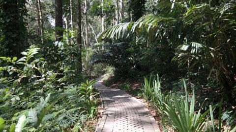 Taman Hutan Raya Djuanda, Bandung