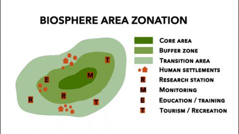 Zonasi cagar biosfer